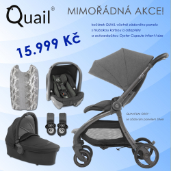 BabyStyle Egg Quail stroller 2019 + carrycot + adaptors + car seat, Quantum Grey/ Silver